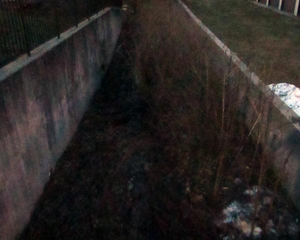Haunted Creek